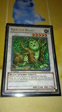 Naturia Beast HA02 EN026 Secret Rare 1st Edition Yugioh