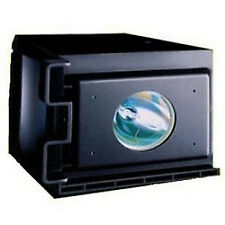 REPLACEMENT LAMP & HOUSING FOR SAMSUNG PLH403WS3 AA47-10001B