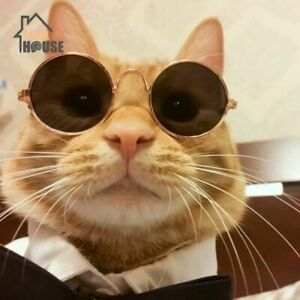 Cats Pets Fun Sunglasses for Small Dogs Cats Kittens Googles Cool Glasses