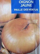 200  Graines semences OIGNON JAUNE Paille des vertus Précoces  seeds, France
