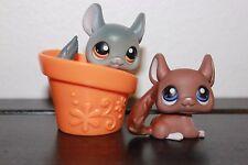 Littlest Pet Shop White Grey Gray Green Eyes Chinchilla #144 #314 LOT BROWN HAT
