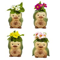 Ceramic Animal Succulent pots,Cute Set- 4 Small Flower pot Cactus Animal Planter