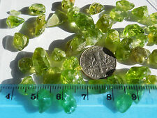 41pc.TUMBLED PERIDOT / OLIVINE 5-15mm Arizona 24.8g:Metaphysical; Healing #63