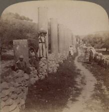 Palestine. Herod's Street of Columns. Remains of Magnificent Samaria. Stereoview