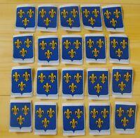 Lot 20 insigne écusson tissu patch scout scoutisme Province Ile de France