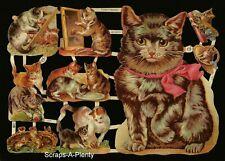German Embossed Scrap Die Cut Relief - Precious Kittens / Cats     EF7214