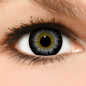"""BigEyes Circle Lenses lila """"Violet"""" ohne und mit Stärke + GRATIS Behälter"""