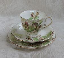 Royal Albert Jack-in-the-Pulpit Trio Set Tazza tè con doppio piatto