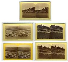 5 photos MIRRIAM's SHEEP RANCH GURNSEY Rocky Mountain TEMPLETON's GAP stereoview