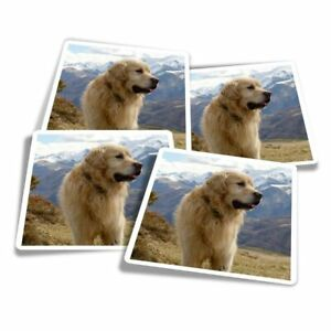4x Square Stickers 10 cm - Cute Pyrenees Mountain Dog  #3592