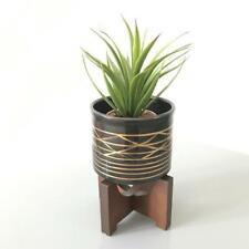 Small PLANTER / Succulent Pot & Wooden Plant / Stand / Metallic Trim