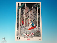 Amazing Spider-Man Limited Edition Print Hero Initiative 2011 Unnumbered Proof