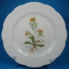 Dansk IVY Accent Luncheon Plate (s) Diplotaxis Muralis Yellow Wall-Rocket France