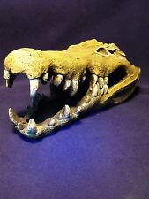 Aquarium Ornament Nile Crocodile Skull Décoration Grand Aquarium Ornement croco