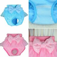 Female Puppy Pet Cat Dog Sanitary Shorts Brief Knickers Panties Bow Underwear