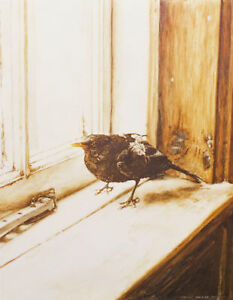 Blackbird GREETINGS BIRTHDAY CARD Bird Painting Steve Greaves Watercolour Nature