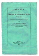 1871 - CAVALLI - ALLEVAMENTO - CARELLI - ED. NAPOLETANA - BRIGATA DI CAVALLERIA