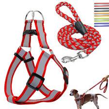 Riflettente Pettorina e guinzaglio per cani cane Nylon Regolabile Chihuahua SML