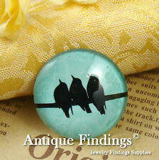 2PCS 30mm Photo Handmade Bird Glass Dome Cabochon Cameo Cabs BCH701F