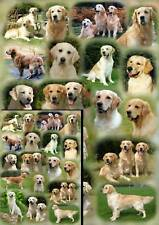 Golden Retriever Dog Gift Wrapping Paper By Starprint