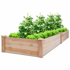 Wooden Vegetable Raised Garden Bed Elevated Planter Patio Backyard Flowers Plant