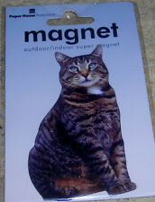 "PAPER HOUSE BROWN TABBY CAT 3"" REFRIGERATOR MAGNET"