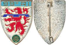 99° Régiment d'Infanterie, écu, relief, épingle sertie, Drago Noisiel 2201(5583)