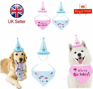 Toy Puppy Dog Cat Birthday Hat Christmas Costume Cat Birthday Pet Dog Cap