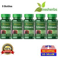 ECHINACEA 400MG Immune IMMUNITY SUPPORT Anti Virus Flu Herbal Supplement 500ct