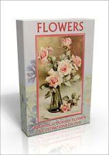 Flower Illustrations - 500 colour public domain pictures on DVD