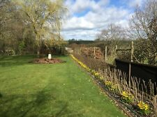 Our Best Value mixed native hedgerow plant scheme from 5m - 200m, hedging plants