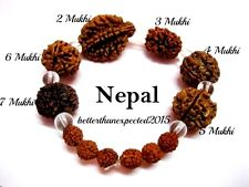 Rudraksha Rudraksh 2 3 4 5 6 7 Mukhi (Face) Beads Mala Wrist band bracelet--AA++