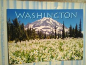 amazing PHOTO POST CARD WILDFLOWERS BELOW MOUNT RAINIER NATIONAL PARK WASHINGTON