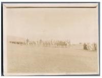 Algérie, Officiers français et cavaliers arabes  Vintage citrate print.  Tirag