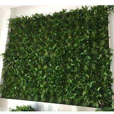 DCP Vertical Garden Grow Bag, Wall Hanging Planter Bag (36, green)