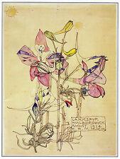 Larkspur Walberswick Charles Rennie Mackintosh print in 10x12 inch mount SUPERB