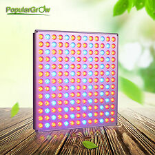 PopularGrow 45W LED Grow Light 169PCS For Commercial Hydroponics kits Panel lamp