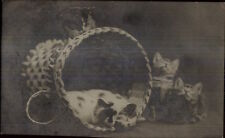 Kittens - Kitty Cats & Basket Photo Crafts Co Columbus OH c1910 RPPC