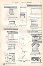 1880 Stampa ~ Roman Architecture ~ IONIC volute COLOSSEO TOSCANO colonna ETC