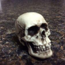American Made Skull Skeleton Motorcycle head Goth Punk Knob Biker Harley 09
