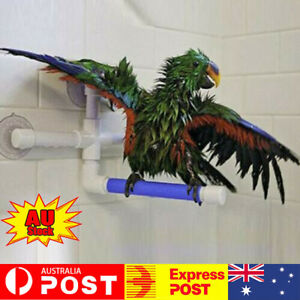 Pet Birds Shower Perch Parrot Paw Grinding Stand Budgee Holder Rack Bath Toys