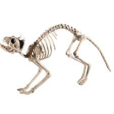 XXL Katze Katzen Skelett Tierskelett ca.  60cm Halloween Karneval Party Deko