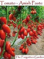 Tomato Seed Amish Paste 100 Seeds Heirloom Vegetable Garden Vine Indeterminate