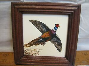 Sm Chris Scheidler Pagano Framed Painting Ring Neck Pheasant Wildlife Art Decor