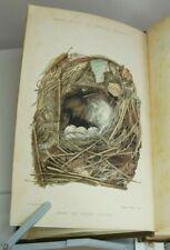 BUTLER - BRITISH BIRDS EGGS HANDBOOK OOLOGY 38 COL PLTS ORNITHOLOGY BIRD 1880