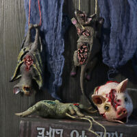 Props  Horror Animal Head Simulation Mouse Bat Spider Pig Haunted House Decor