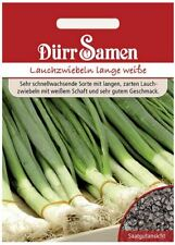 Gemüse Zwiebel F1 toughball 50 Samen Haupt früh Zwiebel