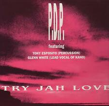 "TONY ESPOSITO  P.D.P.  GLEENN WHITE - RARO MIX 12 POLLICI "" TRY JAH LOVE  """