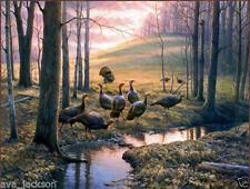 Not Framed Original Canvas Print Home Decor Wall Art  Wild turkeys Forest Callin