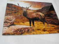 Large Glass Chopping Cutting Board Kitchen Worktop Saver HIGHLAND SCOTTISH STAG